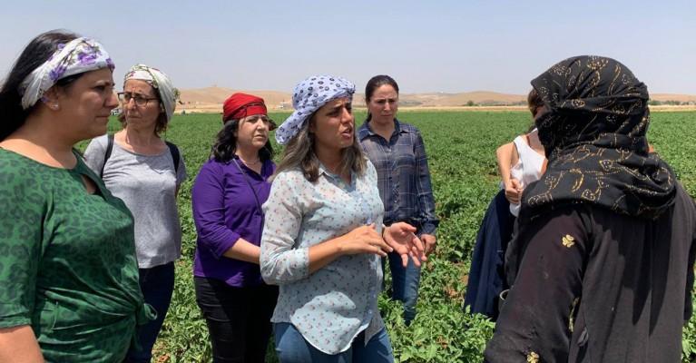 HDP: Kadınlarla her zaman dayanışma içinde olacağız