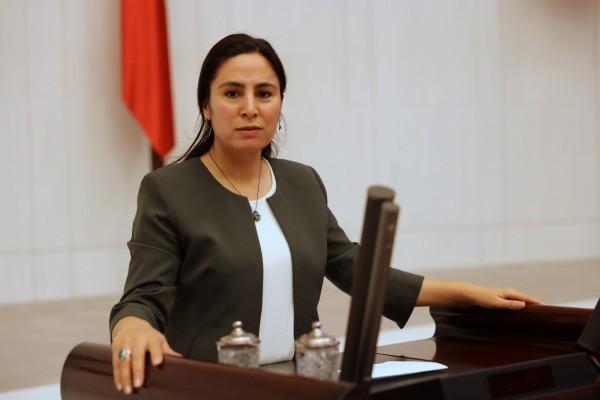 Milletvekili Sürücü, Bakan Pakdemirli'ye fıstık ağaçlarını sordu
